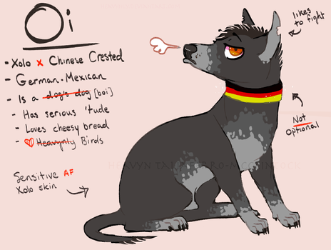 Oi ref sheet by Heavynly