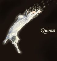 Quinet of NOFNA by TheTyro