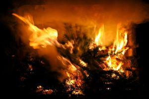 fire - feuer 6 by archaeopteryx-stocks