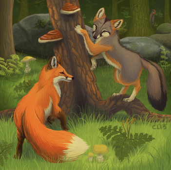 F for Fox by Herboreal