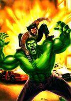 Wolverine v Hulk - to the end by Robert-Shane