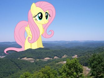 Fluttershy visiting Kentucky by TheOtterPony