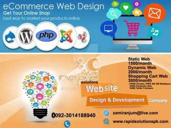 Ecommerce-Website-Developme Offer by zamir