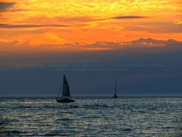 Sailboats at Sunset by Foozma73