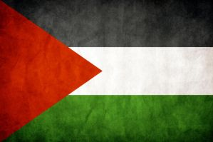 Palestine Grungy Flag by think0