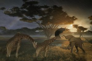 Africa in the rain-Finding shelter by SlichoArt