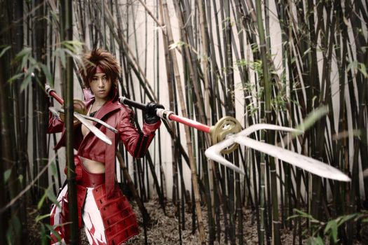 Basara: Yukimura..On the hunt by twinklee