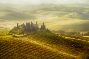 Podere Belvedere in the mist- 5:52 AM by CitizenFresh