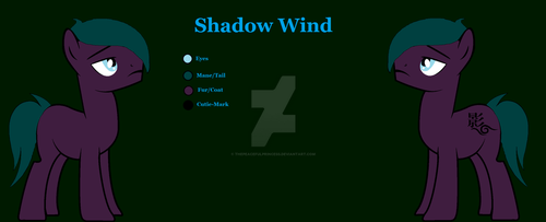 Shadow Wind's Solo Debut by ThePeacefulPrincess