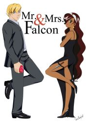 Mr and Mrs Falcon Commission by Shaami