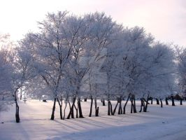 Frosty Day by Handie