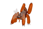 Fakemon: Dragorb by CrimsonVampiress