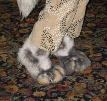 New paws by Niennis