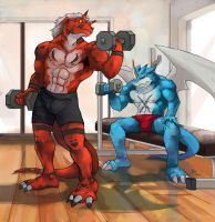 Day in the DIGIGYM by X-Buimon-Sama