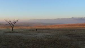 early morning drakensburg by grabakiwi