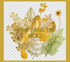 PNG PACK GOLD BY FEDERICO1016 by federico1016