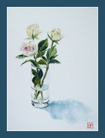 Almost white roses by stokrotas