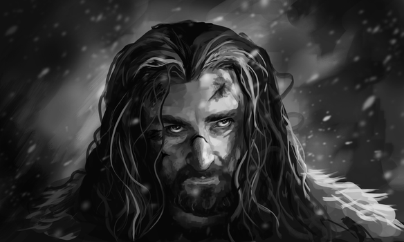 Thorin Oakenshield by teubo