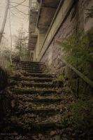 Steps by C-Asepsis