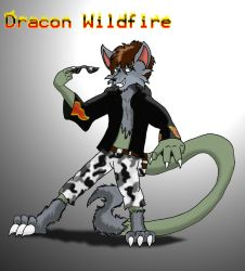 Dracon Wildfire by Dragon-Furry