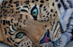 Leopard pastels by Sarahharas07
