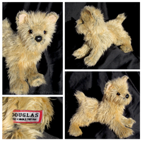 Douglas Small Floppy Dogs - Dilly Cairn Terrier by The-Toy-Chest