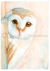 Beautiful Barn Owl by SweetIllustrations