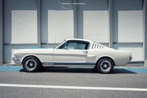 Shelby Mustang G.T. 350 Side Shot by AmericanMuscle