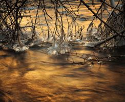 Golden Ice by alexandre-deschaumes