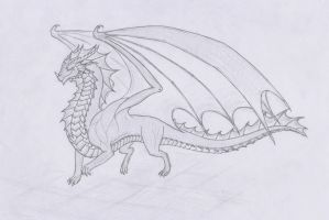 Dragon by User96