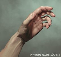 hand study by squiffel