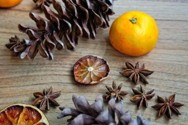 Fruit and Pine Cones by ReneLeBeau