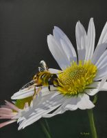 Bee Lunch by georgeayers2000