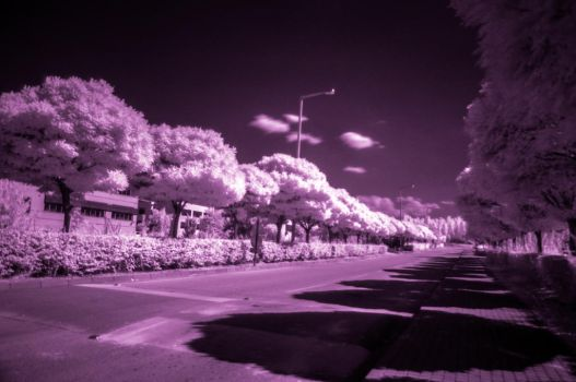 METU Technopolis, Infrared by CoolBlue-Gord10