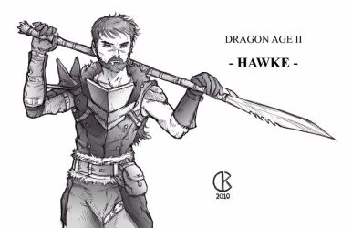 Dragon Age 2: Hawke with Fuzz by shrouded-artist
