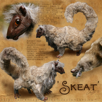 Presenting, a 'Skeat' by ElreniaGreenleaf