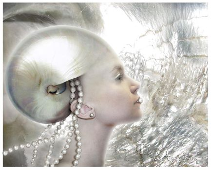 Mother of pearl by digitalessandra