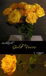 Gold Rose Pack by lockstock