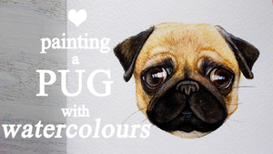 Painting a PUG with watercolours by WeroNoYume