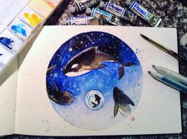 An Orca's Comet by HeavenlyIllusions