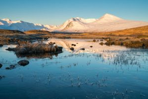 Rannoch Moor by Spyder-art