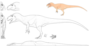 Allosaurus Model Sheet - The Mesozoic Project by Sketchy-raptor