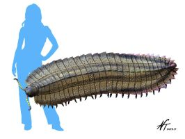 Arthropleura by NTamura