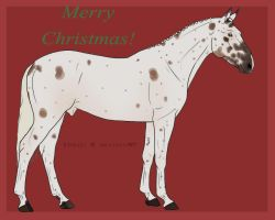Xmas Design for Dreaming by WB-Equine-Art