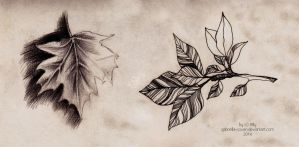 Leaves. Realistic and decorative by gabriella-coven