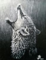 Wolfs  Rain by DivinoArtista