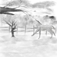 Charcoal Horse by rev-Jesse-C