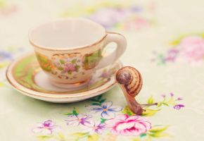 .:: Tea thief ::. by Whimsical-Dreams
