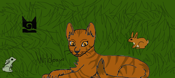 Wildpaw in WindClan Territory by kimbafan
