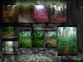 Grove of damned souls #1-10 Stockpack by Dragoroth-stock